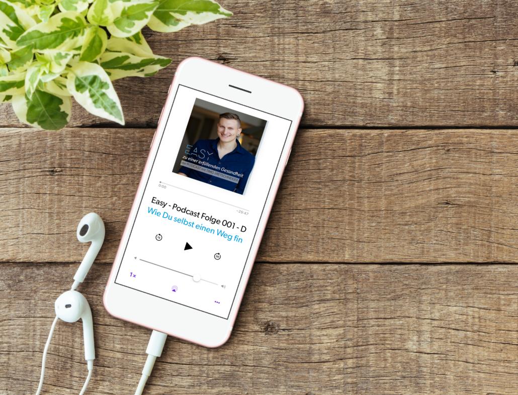Höre Dir meinen Podcast auf iTunes oder Spotify an.